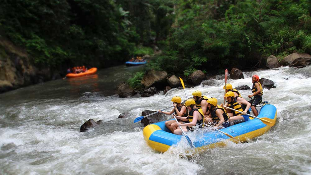 Ayung Rafting, Coffee Plantation and Monkey Forest | Bali ...